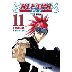 Bleach 11 - A Star and a...