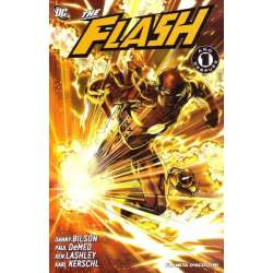 THE FLASH.  Un año despues